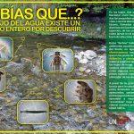 BiodiversidadPeinin_5